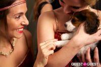 Animal Haven's Speakeasy #101