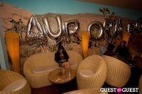 Auroraborealis Closing Party at The Standard #2