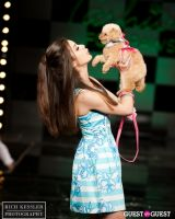 Fashion for Paws 2013 #8