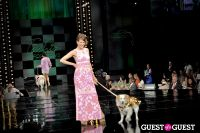 Fashion for Paws 2013 II #30