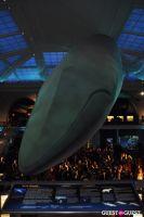 American Museum of Natural History's 2013 Museum Dance #2