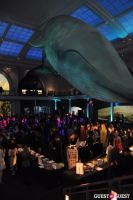 American Museum of Natural History's 2013 Museum Dance #31