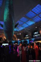 American Museum of Natural History's 2013 Museum Dance #37