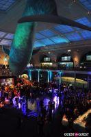 American Museum of Natural History's 2013 Museum Dance #53