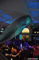 American Museum of Natural History's 2013 Museum Dance #55