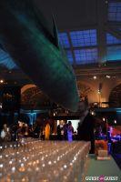 American Museum of Natural History's 2013 Museum Dance #95