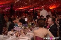The New York Botanical Gardens Conservatory Ball 2013 #6
