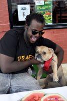 MidCity Dog Days Festival #11