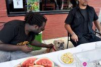 MidCity Dog Days Festival #12