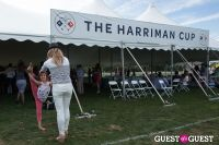 The 29th Annual Harriman Cup #268