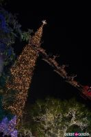 The Grove's 11th Annual Christmas Tree Lighting Spectacular Presented by Citi #5