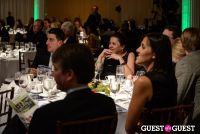 Global Green Designer Awards #295