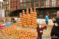 Old Navy's Urban Pumpkin Patch #8