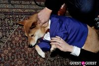 Menswear Dog's Capsule Collection launch party #90