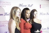 Sixth Annual Blossom Ball Benefitting The Endometriosis Foundation of America #207