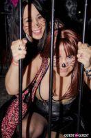 Catface Launch at DBA Hollywood #214