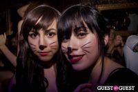 Catface Launch at DBA Hollywood #278
