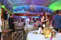 Save Venice Enchanted Garden Ball #63