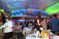 Save Venice Enchanted Garden Ball #64