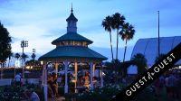 Coachella 2014 Weekend 2 #47