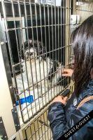 Animal Care Spring Fling #44