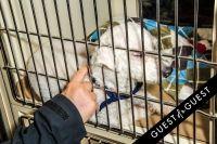 Animal Care Spring Fling #118