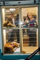 Animal Care Spring Fling #152