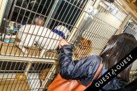 Animal Care Spring Fling #154