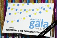2014 Chashama Gala #23