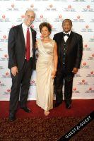American Heart Association's 2014 Heart Ball #87