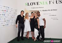 Slovenia in US at Gallery MC #3