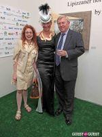 Slovenia in US Lipizzaner horses by Alenka Slavinec #22