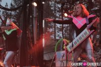 Snowglobe Music Festival day three #2