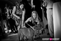 Love 4 Animals Fundraiser for NYC Shelter Animals #82