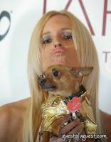 Jen Marden, Eli the Chihuahua