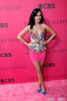 2010 Victoria's Secret Fashion Show Pink Carpet Arrivals #72