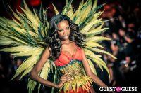 Victoria's Secret Fashion Show 2013 #147