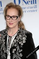 14th Annual Monte Cristo Awards Dinner Honoring Meryl Streep #18