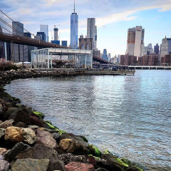 The Best NYC Walks To Take This National Walking Day