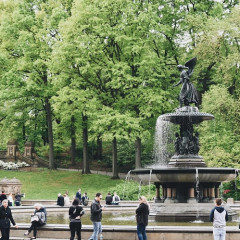 Central Park's Top 5 Spots, Ranked