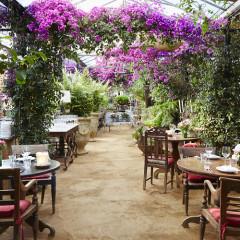 London's Best Al Fresco Restaurants