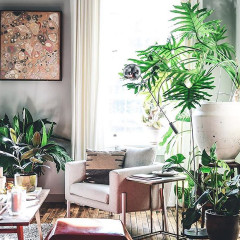 How To Feng Shui Your Space In A Day