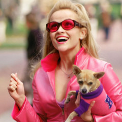 A 'Legally Blonde' Brunch Party Is Coming To NYC