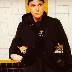 Sean Avery and His Two Chihuahuas Don't Take Shit