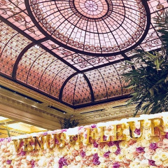 Escape To The South Of France At The Plaza's Palm Court