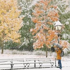 Dreamy Photos Of New York's First Snowfall Of The Season