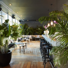 Summer Hot Spot Gitano Is Back With Jungle Room, A New Year-Round Location