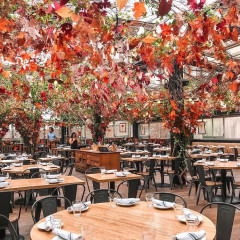The Most Instagrammable Fall Spots In NYC