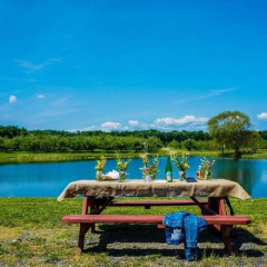 Celebrate The Fourth Of July With A Rustic Day Trip To Twin Star Orchards