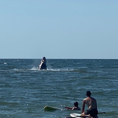 This Weekend In The Hamptons Was All About Whale Watching